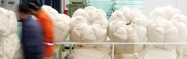 Chilean Wool Tops Processing
